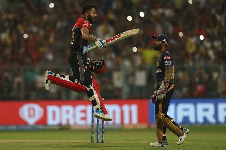 cricket news IPL 2019 Virat Kohli RCB Royal Challengers Bangalore