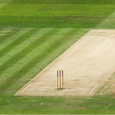 cricket pitch stumps generic
