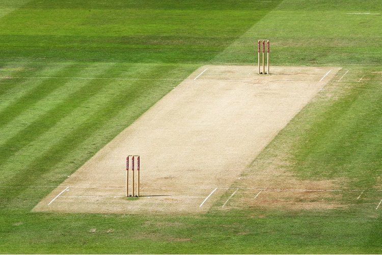 cricket pitch stumps generic