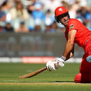 Beau Webster Melbourne Renegades BBL